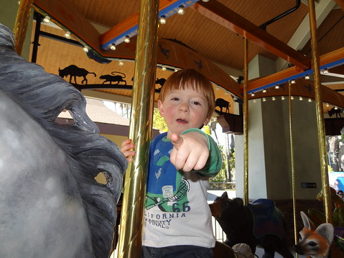 Archie Rides a Horse on the New Conservation Carousel
