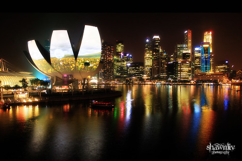 iLight Marina Bay - Garden of Light
