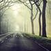 enjoy the scenery by silviaON