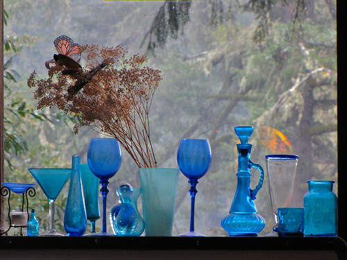 california blue trees window glass forest glasses view guerneville guernewood