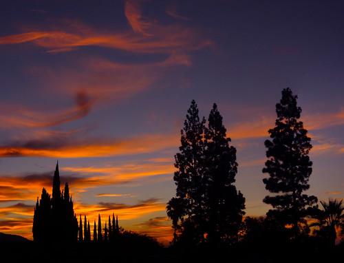 california morning trees sky color nature pine clouds sunrise landscape fire dawn early losangeles arboles alba sony silhouettes palm amanecer palmtrees socal aurora nubes cypress pasadena madrugada aurore sierramadre aube alborada salidadelsol pointdujour dschx9v