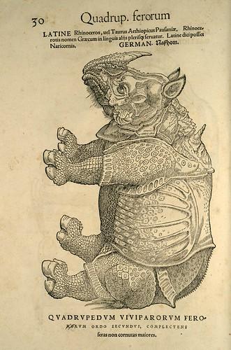 004-Rinoceronte-Icones animalium- (1553)- Conrad  Gesner- SICD Strasbourg