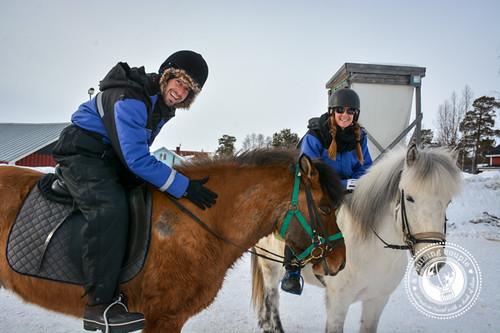 A Cruising Couple Icelandic Horseback Riding