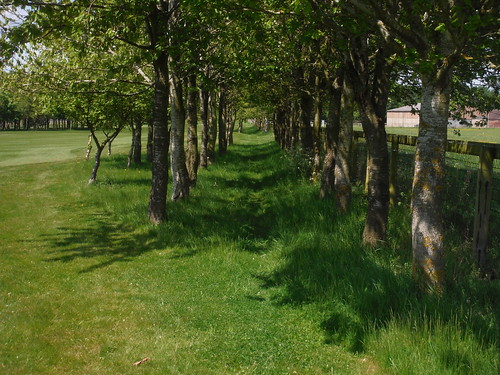 Path along Golf Course, Waterstock