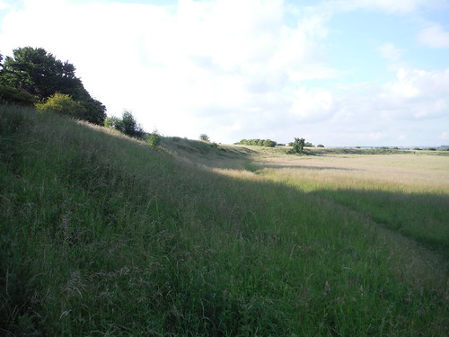 Durrington Walls