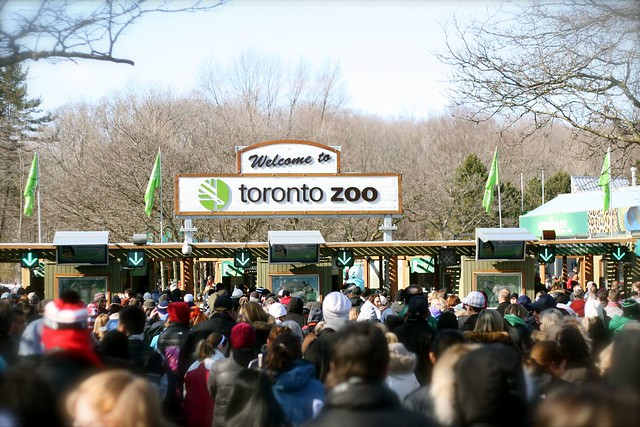 Toronto Zoo - Feb 20 2012