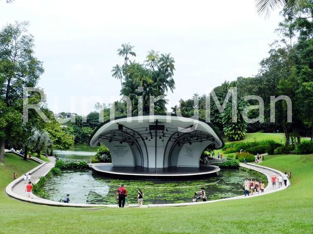 Singapore Botanic Gardens 04