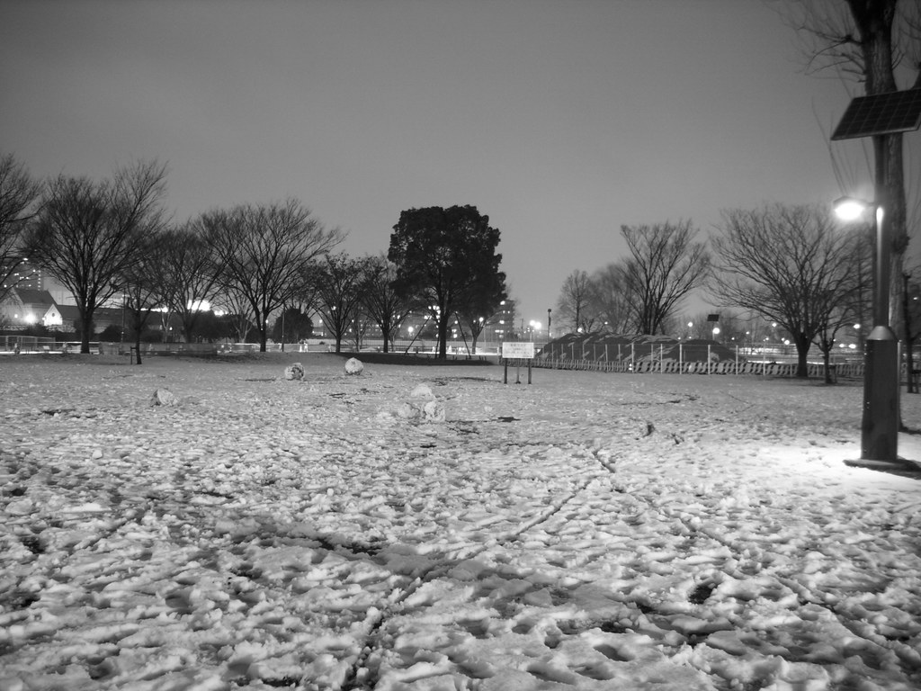park van sneeuw
