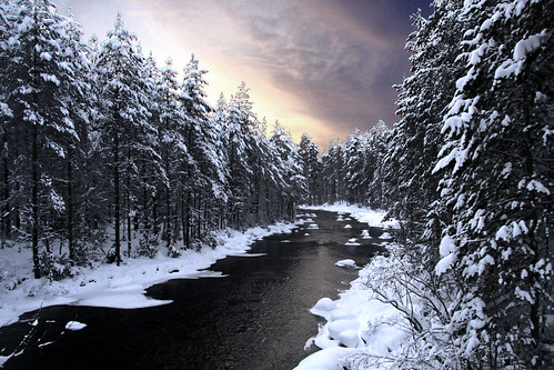 無料写真素材, 自然風景, 森林, 河川・湖, 雪, 風景  フィンランド