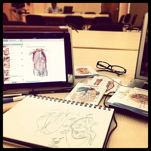 Pure Anatomy. With the French Roméo et Juliette soundtrack..