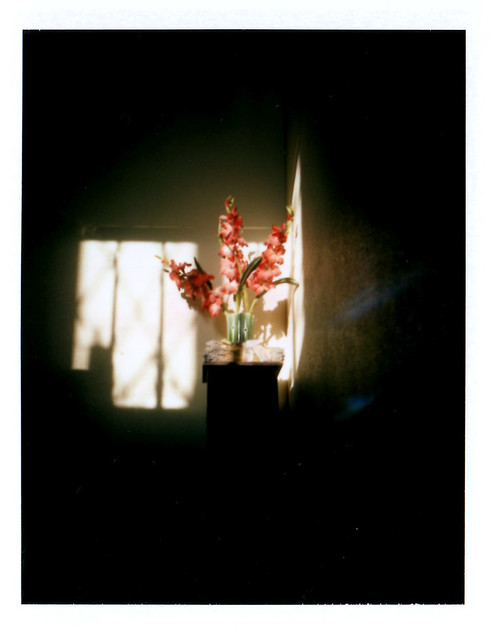 20120310-morninglight