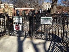 Gate at Tompkins Square Park Dog Run