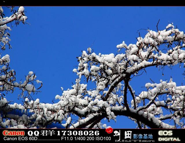 Beijing snow in March