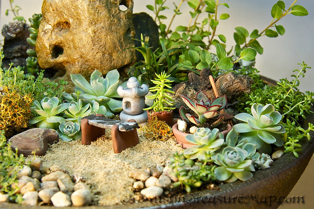 miniature zen garden close up flickr photo sharing. Black Bedroom Furniture Sets. Home Design Ideas