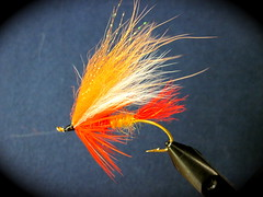 Brad's Brad Winter Steelhead Tie