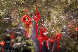 Beijing Beihai Park by Gin-Lung Cheng