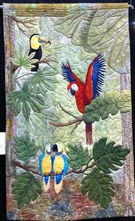 Birds of the Tropics - Sandy Schipper