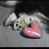 when i give my heart ... by calynlanuza