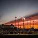 Austin Sunset - Longhorn Softball by Bill Oriani