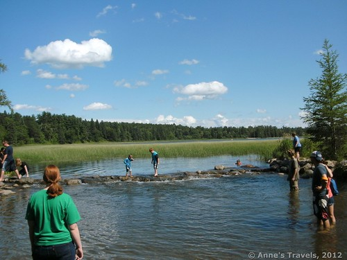 The peaceful headwaters of the Mississippi River on a summer's day, Itasca State Park, Minnesota