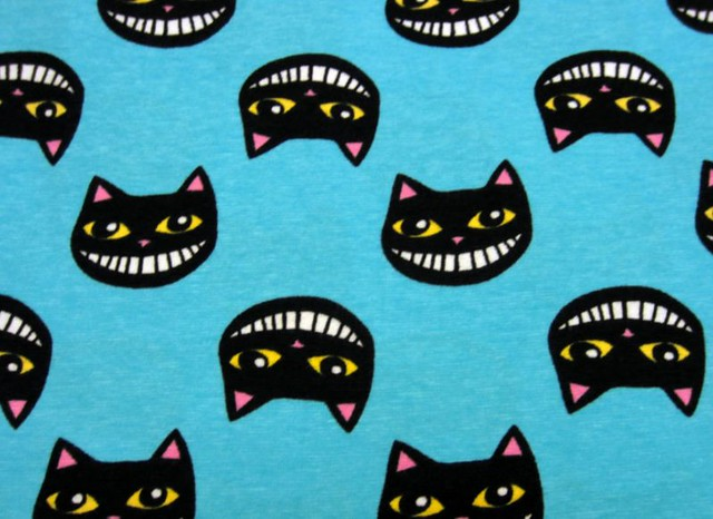 turq cool cats.jpg