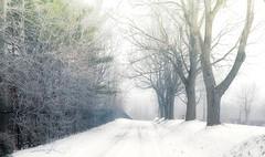 hiver 12