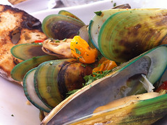green lipped mussels from new zealand for arthrits