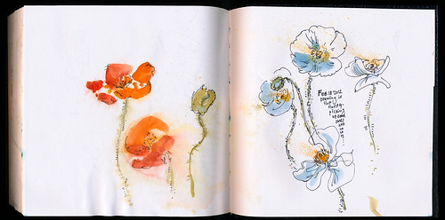 February 2012: Poppies by apple-pine