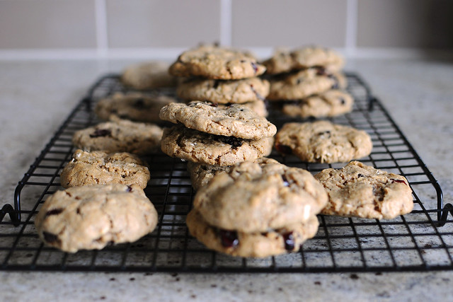 vegan-oatmeal-cranberry-cookies_2