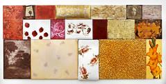 2012</p><p>öljy, akryyli, silkkipaino, brodeeraus, lakka, kumibikromaattivedos, toppaus / olja, akryl, serigrafi, broderi, lack, gummibikromattryck, stoppning / oil, acrylic, silk screen, embroidery,  lacquer, gum bichromate print, padding<br />186x400cm</p><p>© Tuula Lehtinen