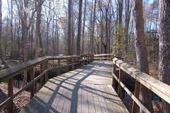 Walterboro Great Swamp Boardwalk