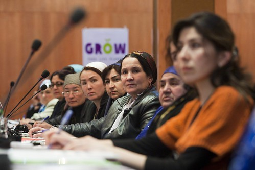 Tajik women discuss their roles in country's food security on the eve of International Women's Day