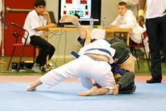 individual sports, contact sport, sports, combat sport, martial arts, judo, japanese martial arts, jujutsu, brazilian jiu-jitsu,