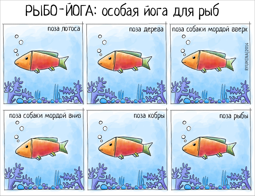 yoga for fishes