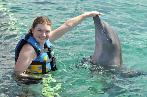 Dolphin Push Pull and Swim