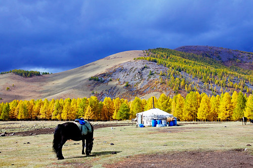 Horse trek in Mongolia IKILOMALLA matkablogi travel blog (3) | by Titta Pousi & Thomas Halloran