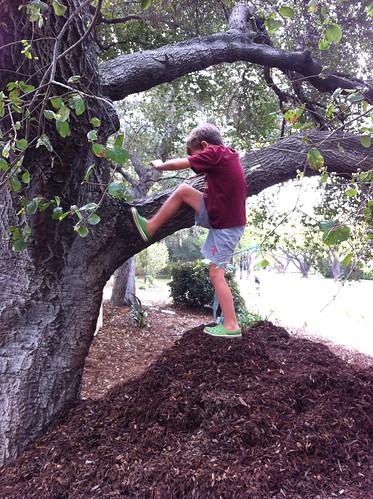 Ezra climbs