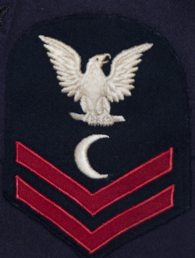 Discerning birds us navy rating badges from wwi to wwii the discerning birds us navy rating badges from wwi to wwii the veterans collection biocorpaavc Gallery