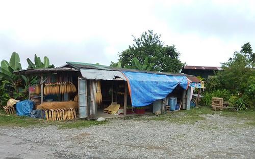 Luzon-San Fernando-Baguio (36)