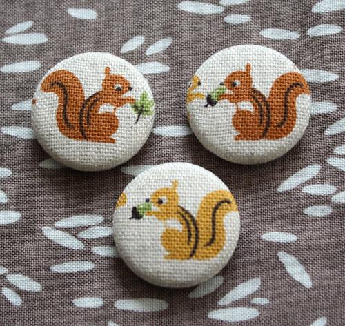 Squirrel Magnet Set