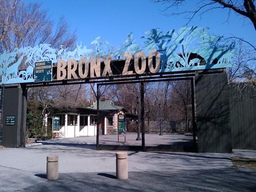 Bronx Zoo: Sign