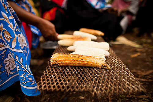 Members of the UWAMWIMA association cooking corn from their far