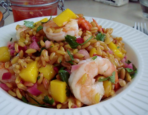Mango & Shrimp Wheat Berry Salad