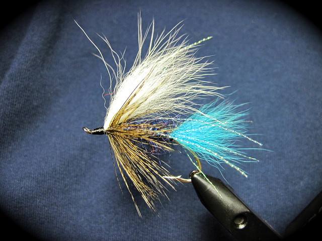 coastal blue steelhead fly