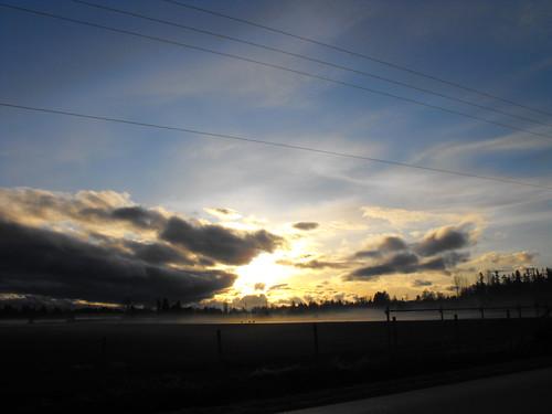 trees clouds sunrise scenery bc britishcolumbia langley mtbaker fraservalley lowermainland