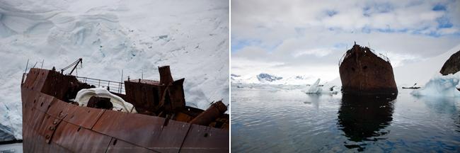 antarctica-blog-47