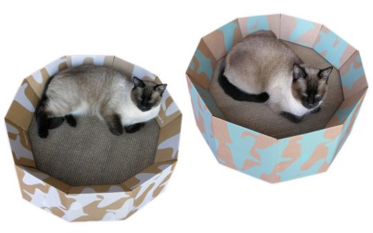 cats&cardboard_012