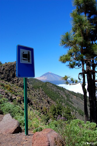 TF-24 - Estrada do Teide