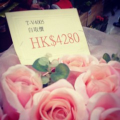 The price of love? Heheh how much does that pink roses bouquet cost?