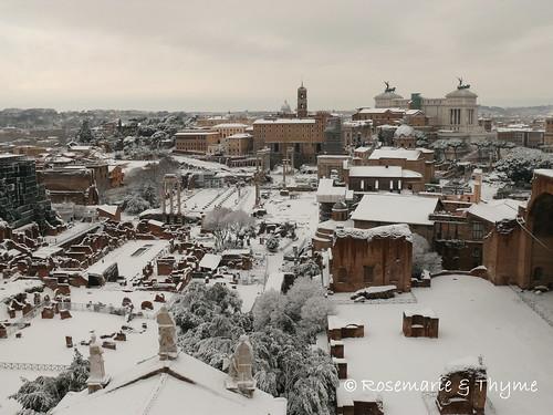 P1120625 - foro_romano_pomeriggio 4.02.2012